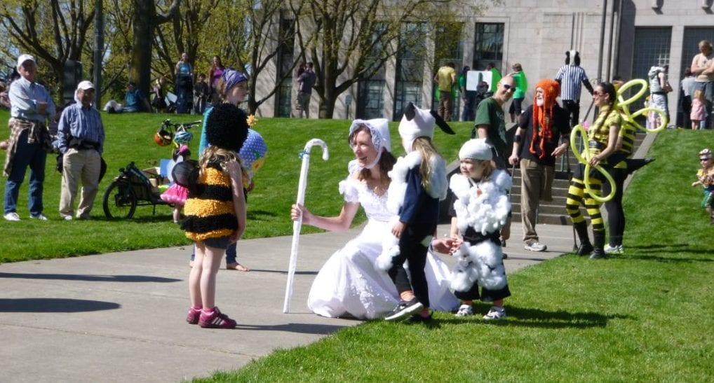 procession of the species bellingham whatcom tourism sheep bees