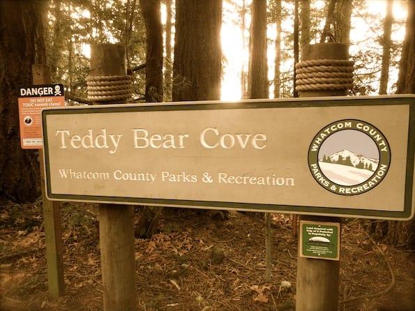 Teddy Bear Cove