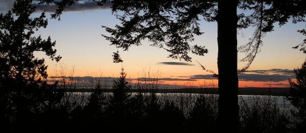 Arboretum Sunset