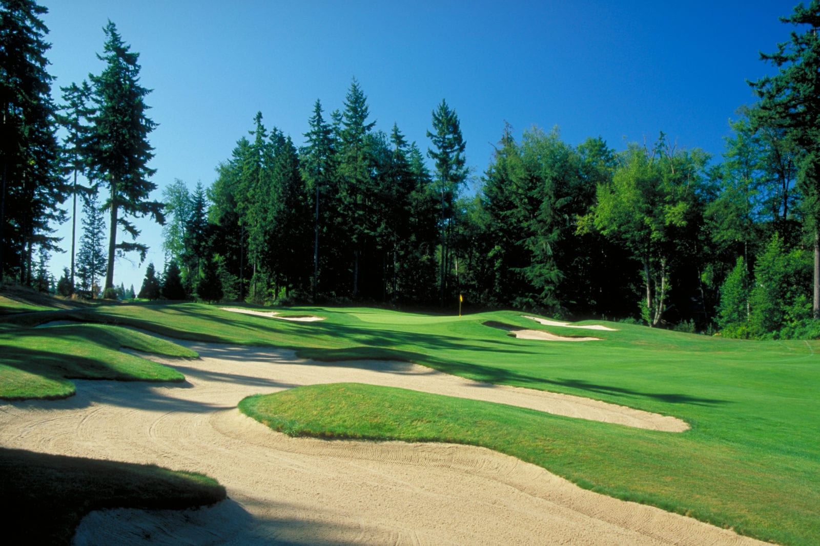 Semiahmoo Golf Club and it's sister course, Loomis Trail are two of my Whatcom County favorites.