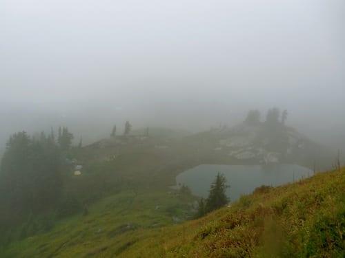 Yellow Aster Butte Fog