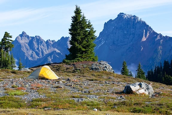 Yellow Aster Butte view of American Border Peak