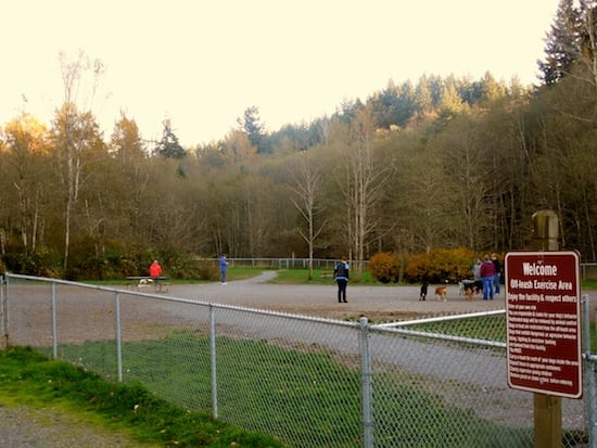 Lake Padden Dog Park