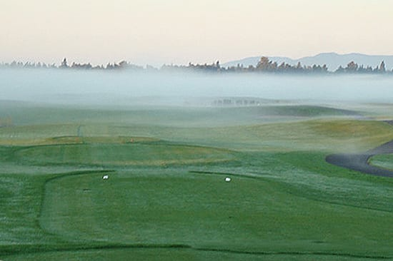 A thin shroud of fog obscures the view down the first fairway.