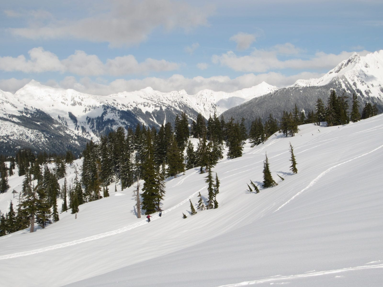 Snowshoe View at Heather Meadows