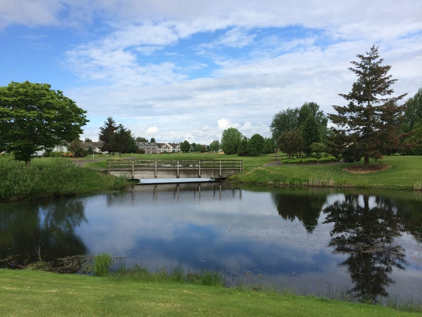 Scenic ponds and bridges at Homestead