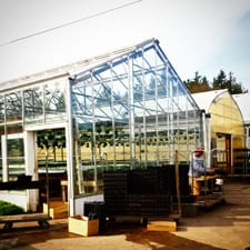 Joe's Greenhouses