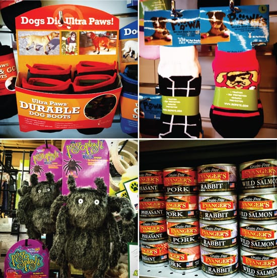 Bow Wow and Woofs, Blaine, Pet Store, Specialty Dog Food, Dog Coats
