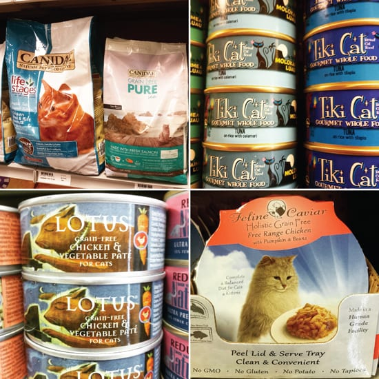 PetStop, Bellingham, Pet Store, Specialty Dog Food, Organic, Raw, Cat Food