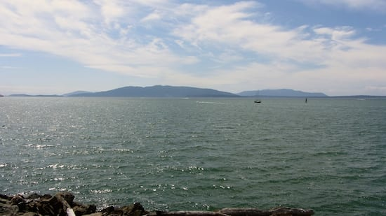 Waterfront Trail View