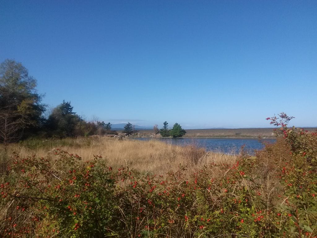 View from Post Point Estuary, Bellingham