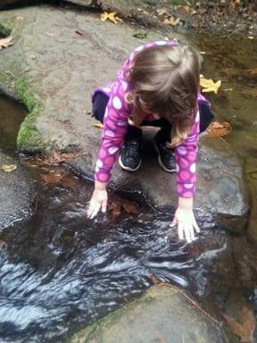 Whatcom Creek, Whatcom Falls Park, Bellingham