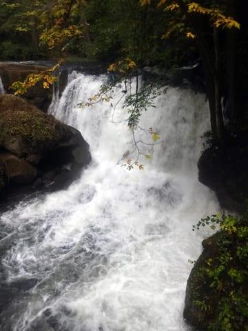 Whatcom Falls, Bellingham