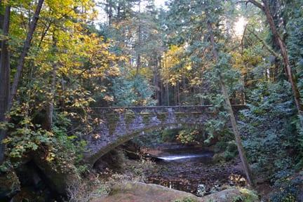 Bridge over Whatcom Falls, Bellingham