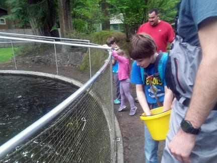 Feeding the hatchery fish, Whatcom Falls Park, Bellingham