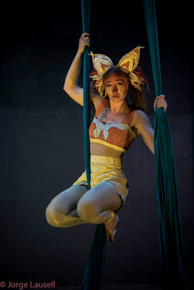 A number of aerialists perform both at Vaudevillingham and via special events for the Guild. Photo by Jorge Lausell.