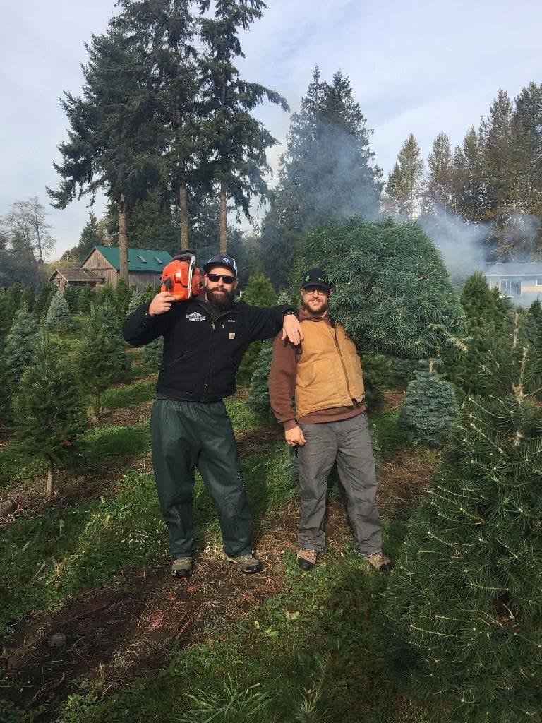 Kulshan Christmas Trees