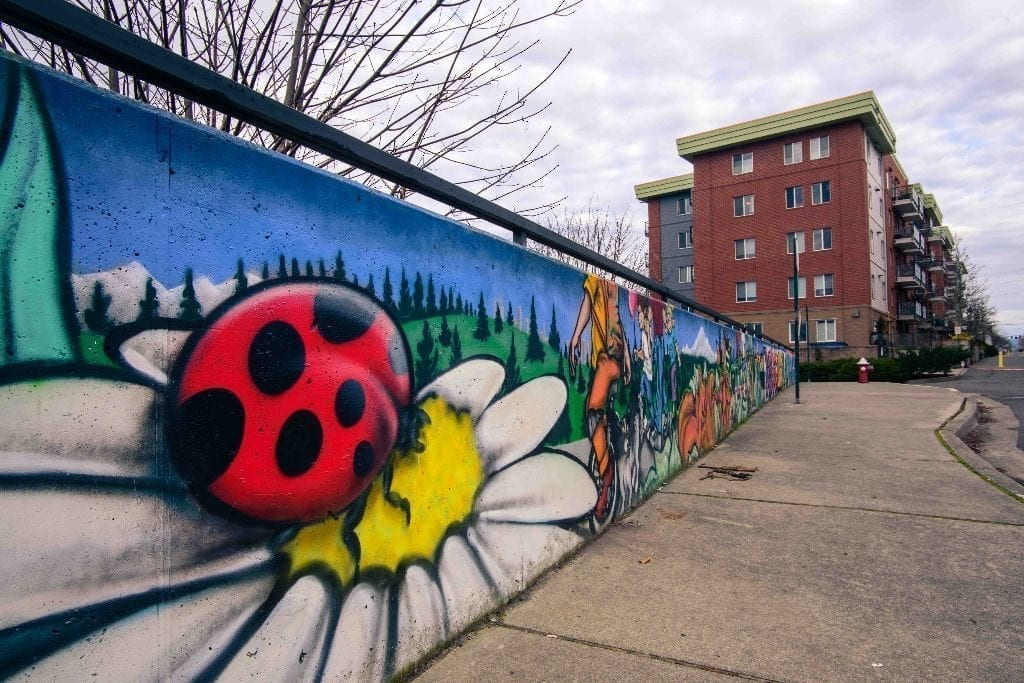 Shawn Cass street art graffiti Bellingham Whatcom Morse Square Bellingham Community Mural