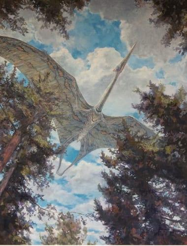 Bellingham Whatcom Museum Endangered Species exhibit