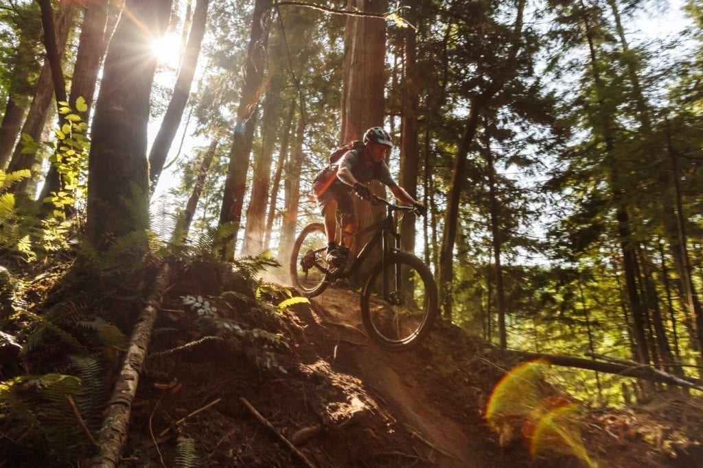 Biking Bellingham Galbraith Mountain Whatcom2