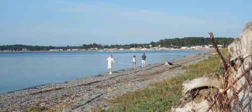 Birch Bay Beachcasting 1