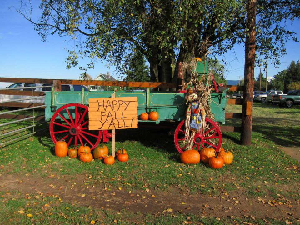 Cramers Western Town And Pumpkin Patch Happy Fall Yall