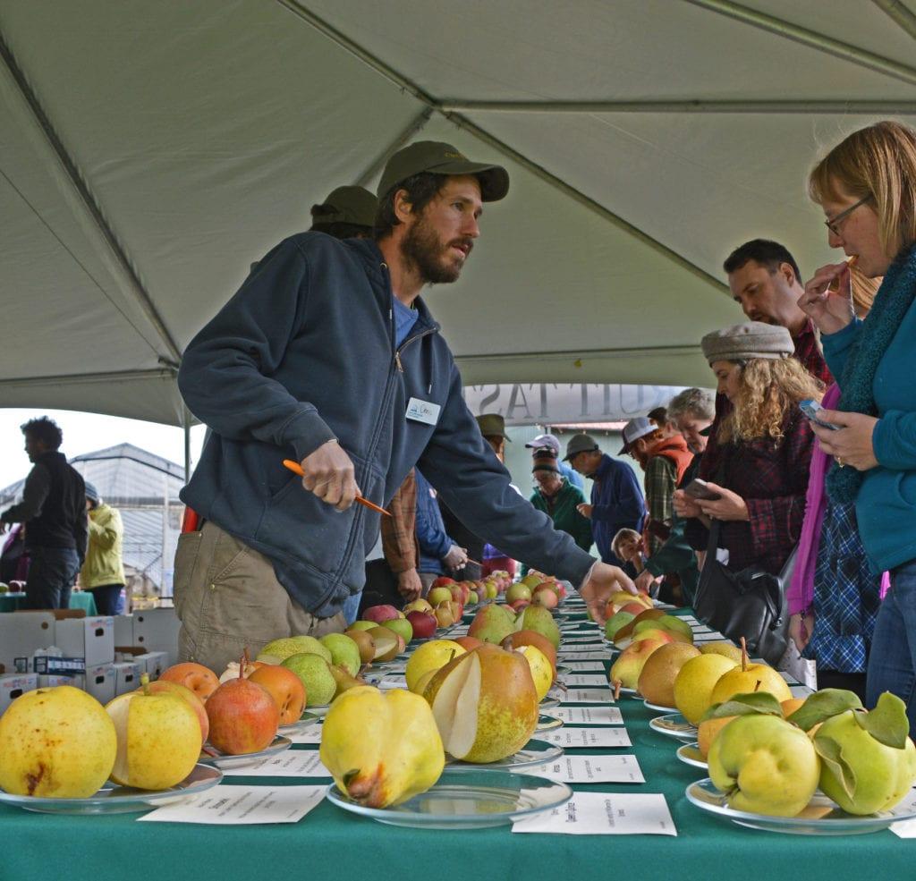 Fall Fruit Festival Cloud Mountain Farms Bellingham Whatcom County2