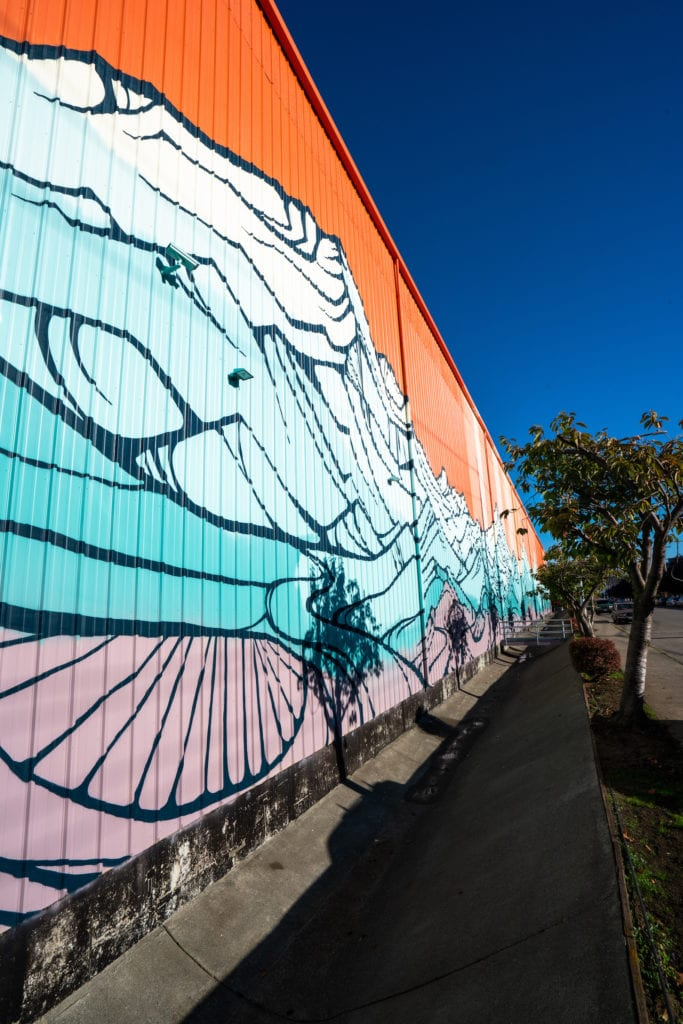 Downtown Bellingham Pse Mural Gretchen Leggit 2329 Copy