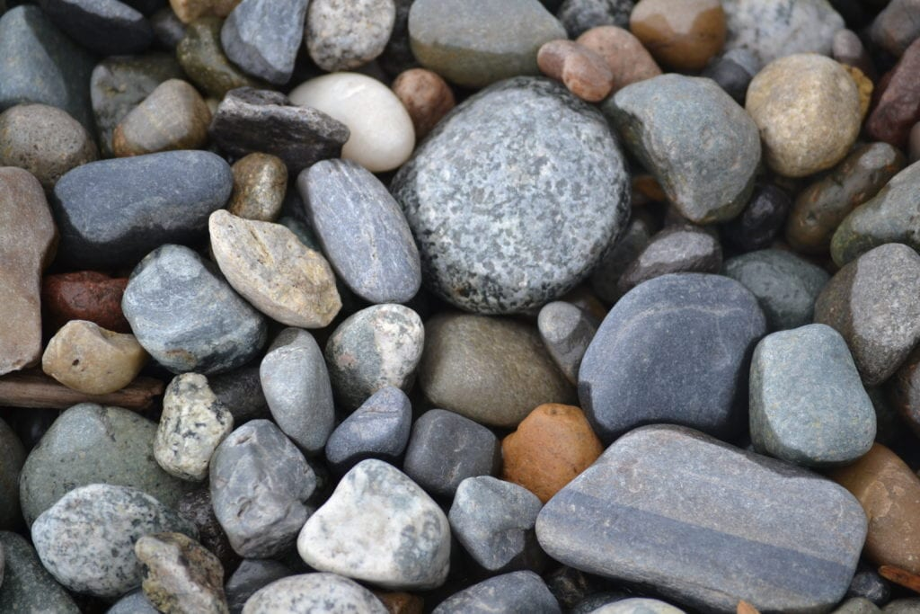 Semiahmoo Blaine Beach Walks Whatcom County Washington (2)