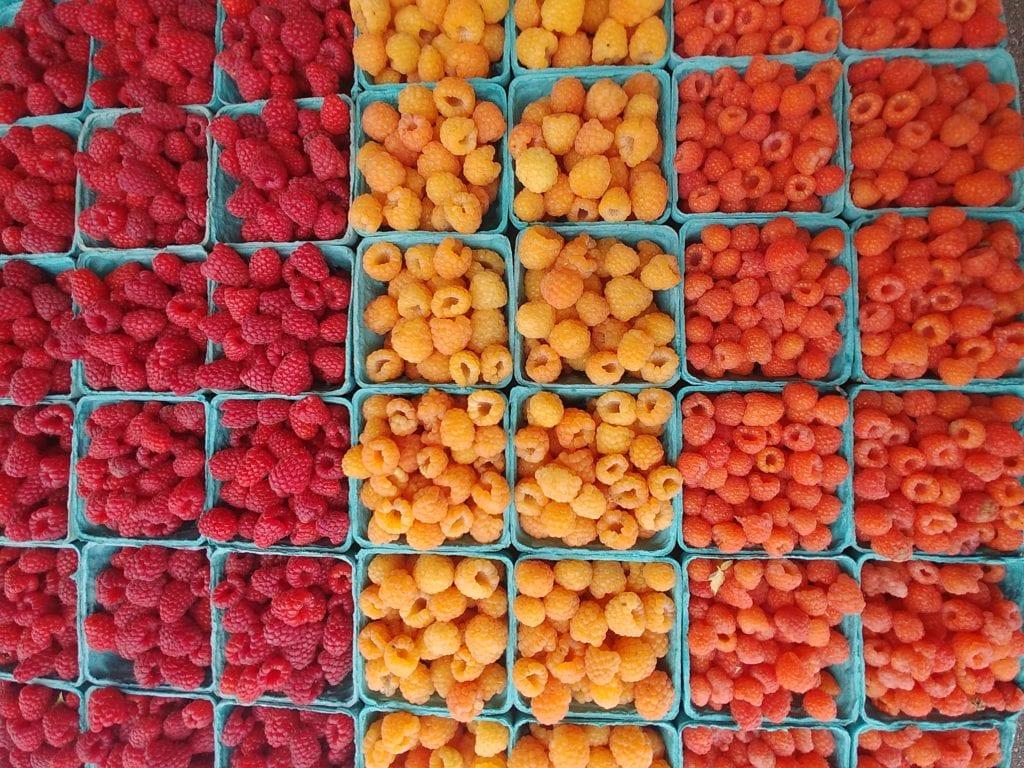 Bellingham Modified Farmers Market