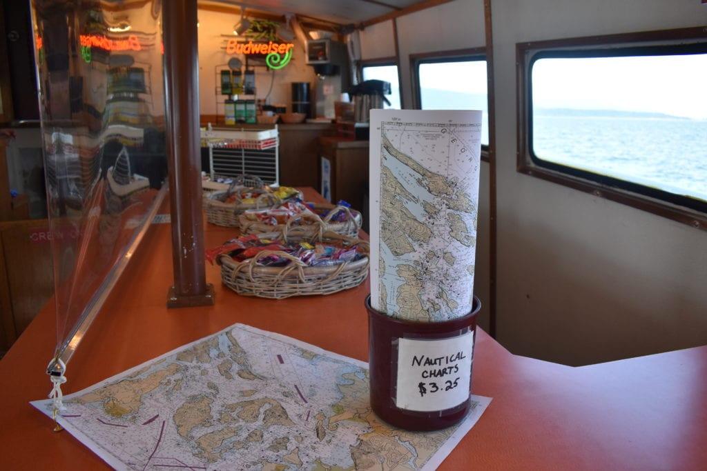 San Juan Cruises Whale Watching Bellingham Washington (71)