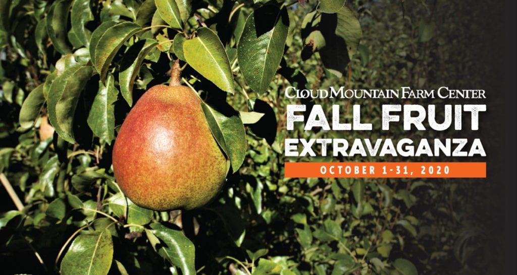 Fall Fruit Extravaganza Web